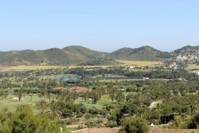 Buena Vista 410115