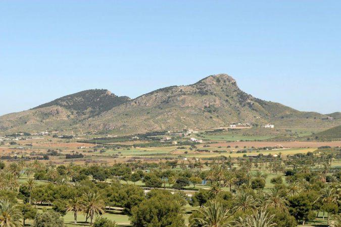 Buena Vista 410117