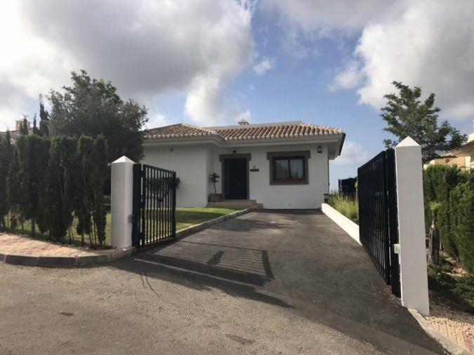 Buena Vista 561158