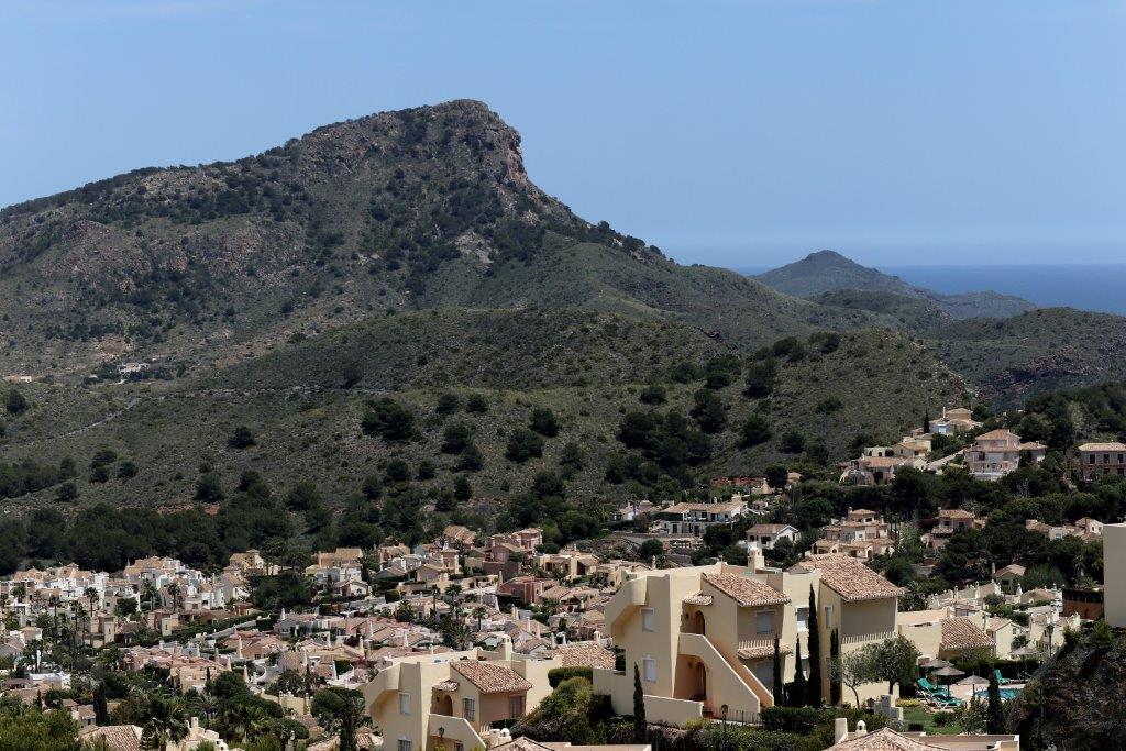 Monte Leon 57173
