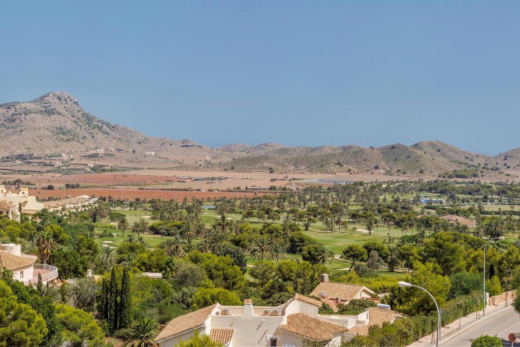 Buena Vista 579151