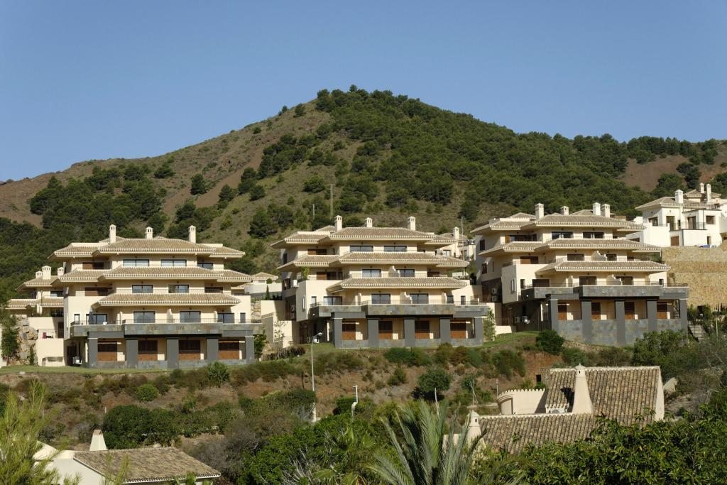 Buena Vista 581151
