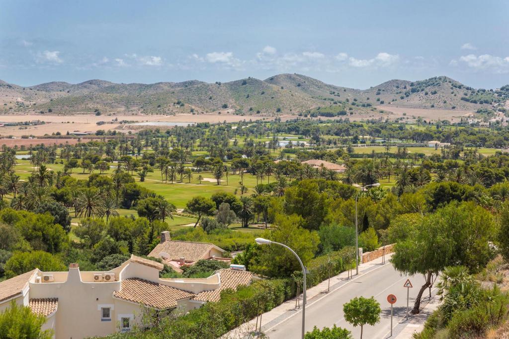 Buena Vista 582155