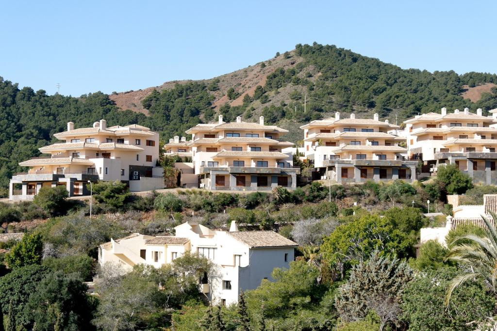 Buena Vista 584159