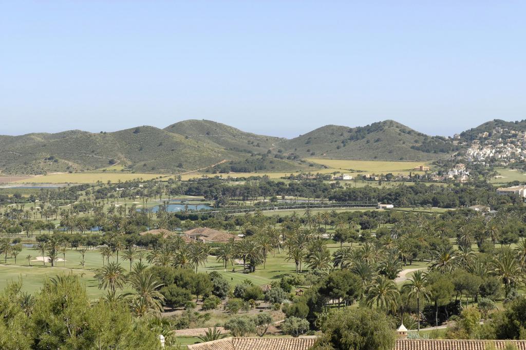 Buena Vista 5841514